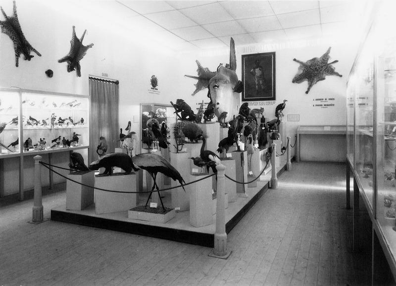 http://www.arca.museus.ul.pt/ArcaSite/obj/ahfotos/MUHNAC-0002615-MB-IMG-web.JPG