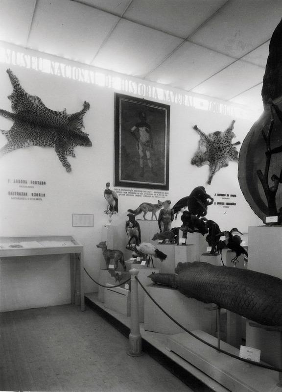http://www.arca.museus.ul.pt/ArcaSite/obj/ahfotos/MUHNAC-0002617-MB-IMG-web.JPG