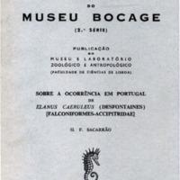 Sobre a ocorrência em Portugal de Elanus caeruleus (Desfontaines). (Falconiformes-Accipitridae)