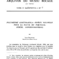 Polymetme corythaeola - espèce nouvelle pour la faune du Portugal (Pisces, Gonostomatidae)