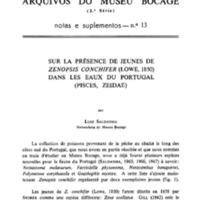 Sur la présence de jeunes de Zenopsis conchifer (Lowe, 1850) dans les eaux du Portugal (Pisces, Zeidae)