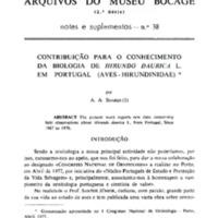 Contribuição para o conhecimento de Hirundo daurica L. em Portugal