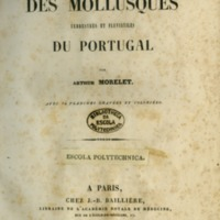 morelet-descrition-des-mollusques-1845.jpg