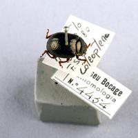 MB07-004454-02.jpg
