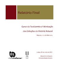 RelatorioMuseuMaputo.pdf