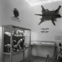http://www.arca.museus.ul.pt/ArcaSite/obj/ahfotos/MUHNAC-0002616-MB-IMG-web.JPG