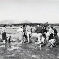 Fotografia de aula prática da cadeira de Zoologia Sistemática e Ecologia Animal do curso de Biologia da Faculdade de Ciências da Universidade de Lisboa, na Península de Tróia, em Abril de 1949.
