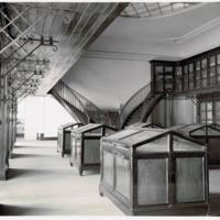 Fotografia da Sala de Exposição dos Invertebrados do Museu Bocage (secção zoológica e antropológica do Museu Nacional de História Natural) em 1935.