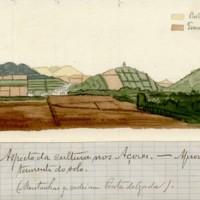 Aspeto da cultura nos Açores