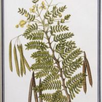 http://www.arca.museus.ul.pt/ArcaSite/obj/ah2/MUHNAC-0002259-MB-IMG-web.JPG
