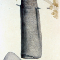 http://www.arca.museus.ul.pt/ArcaSite/obj/agua/MUHNAC-0000468-MB-IMG-web.JPG