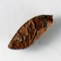 http://www.arca.museus.ul.pt/ArcaSite/obj/bs2/MUHNAC-0002097-JB-IMG-web.JPG